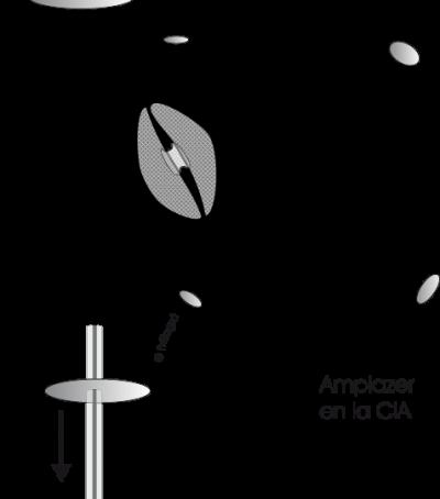 1.3.6.-cia-amplazer.a.5