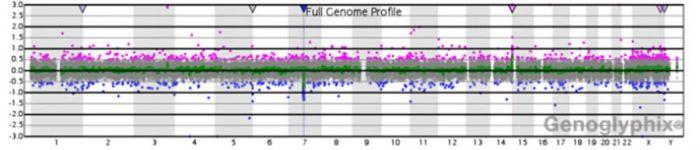 Conceptos De Genética La Web De Las Cardiopatías Congénitas